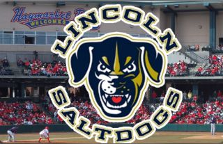 [Lincoln Saltdogs 'Suite' Package]